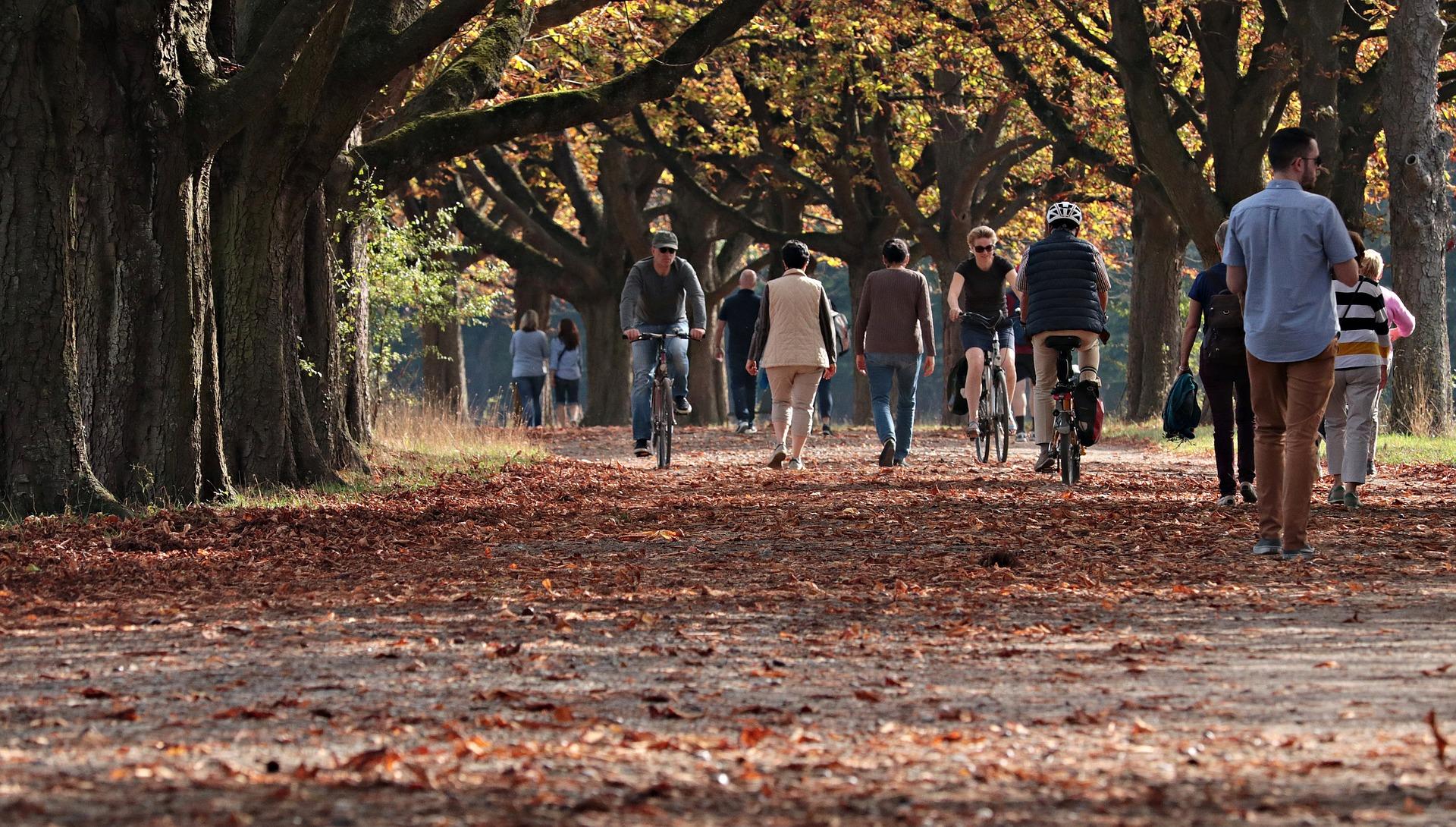 Spaziergang im Park